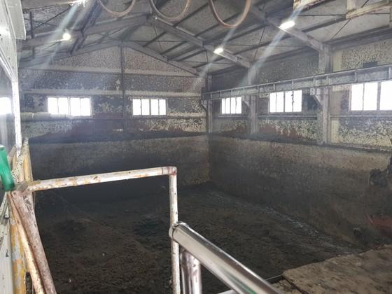 232억원을 들인 청주하수처리장의 하수 슬러지 감량화 시설(사진 위)이 지난달 11일 멈춰서면서 시설 내부에 검은색 슬러지가 쌓여 있다. [최종권 기자]