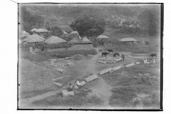 1920~30년대 경북 경주 감은사지. 소들이 보인다. [사진=경주세계문화엑스포]