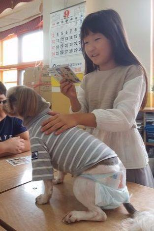 """박진원(9)양이'꽃님이'에게""""힘내라""""며 편지를 읽어주고 있다.최은경 기자"""