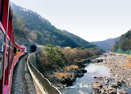 [돈 아끼는 여행 꿀팁] 단양·정선·부안 등 전국 20곳, 만원으로 당일치기 기차여행