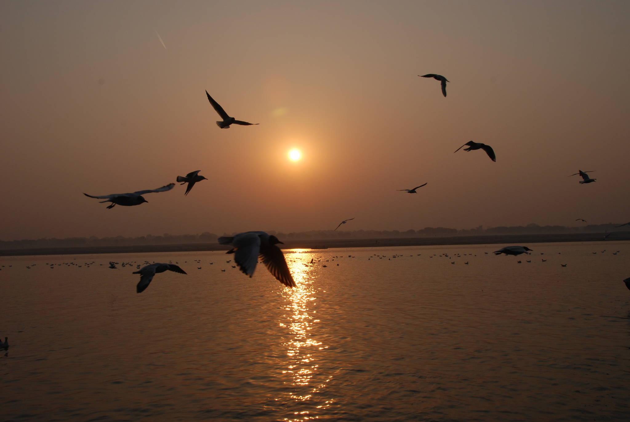 """갠지스강 위로 새가 날아간다. 도마복음의 예수는 """"천국이 하늘에 있는 것이라면, 저 하늘을 나는 새가 너보다 먼저 닿을 것이다. 천국은 너희 안에, 또 너희 밖에 있다""""고 말했다. 백성호 기자"""