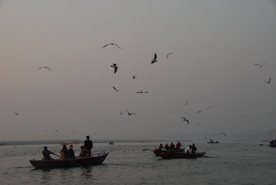 인도의 라즈기르에서 바이샬리로 가려면 갠지스강을 건너야 한다. 싯다르타도 바라나시로 와서 갠지스를 건넜을까. 바라나시는 고대 인도 문명이 꽃피었던 오래된 도시다. 백성호 기자