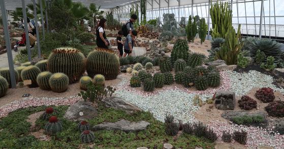 온갖 종류의 다육식물과 허브식물을 볼 수 있는 덕평공룡수목원의 꿈꾸는 온실. 이천=최승식 기자