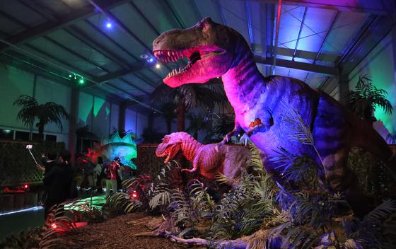 포효소리와 함께 꿈틀거리는 대형 공룡모형들이 모여있는 전시관에 들어서면 한기가 느껴진다. 몸 뒤에서 으르렁~거리는 티렉스를 배경으로 여유있게 기념사진을 찍는 관람객들. 최승식 기자