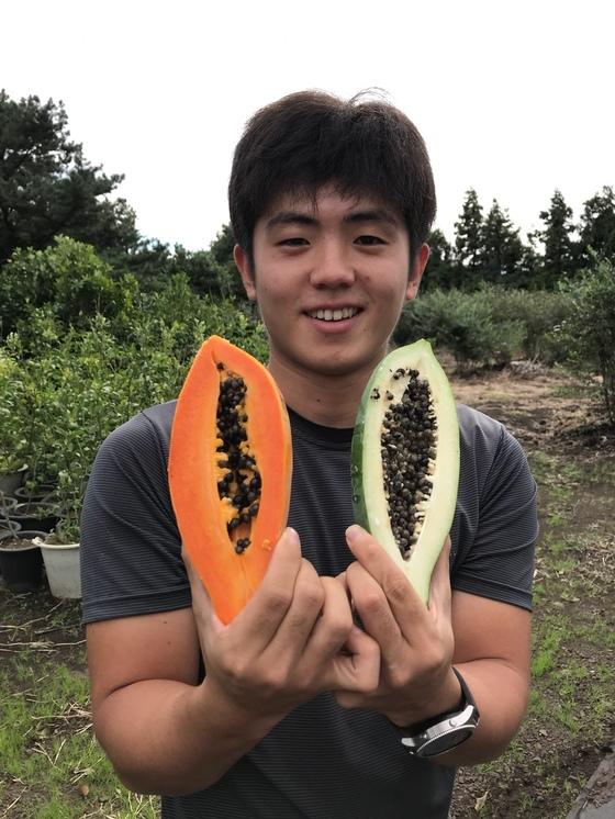 아열대과일 파파야를 들어보이는 김용관씨. 왼쪽의 노란게 다익은 것으로 주로 과일로 먹고 오른쪽의 덜익은 초록색 열매는 채소로 먹는다. 최충일 기자