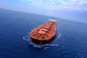 지난 3월 31일 남대서양 인근에 침몰한 스텔라데이지호. [사진 폴라리스쉬핑]