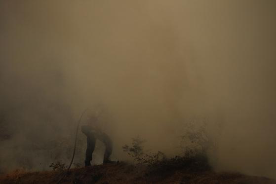 산불은 꺼졌지만 자욱한 연기로 인해 주민과 소방관들이 호흡곤란을 호소하고 있다. [AP=연합뉴스]