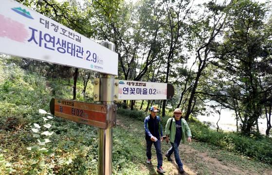 대청호 오백리 길 4구간 '호반낭만길' 구간. [사진 대전마케팅공사]