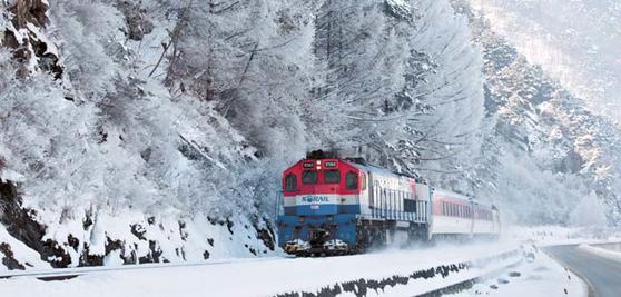 심심산골 정선은 기차여행의 성지다. 정선역에는 하루 네 번 기차가 멈춰 선다.