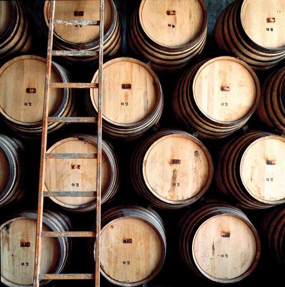 맥캘란 증류소의 오크통들. 오크통의 재질과 크기 등에 따라 위스키의 맛이 달라진다. [사진 에드링턴코리아]