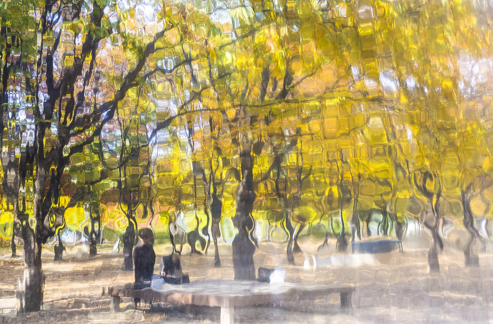 핸드폰사진관 서울숲
