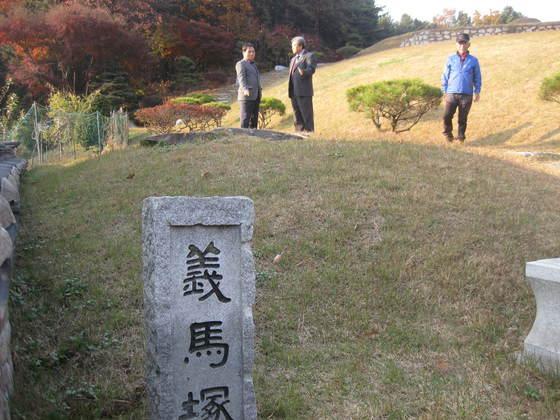 약 400년 전 조성된 의롭고 충성스런 말의 무덤인 '의마총(義馬塚)'. 길가와 주변 지역에는 어디에도 의마총을 알리는 그 흔한 안내간판 하나 보이지 않았다. 말의 무덤은 돌만 조금 보일 정도로 땅에 묻혀 있다. 오른쪽 위로 말의 주인인 이유길 장군의 묘가 보인다. 전익진 기자