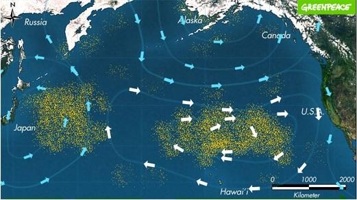 태평양 한 가운데 위치한 쓰레기 섬. 전 세계에서 버려진 플라스틱과 알루미늄캔, 비닐 등 쓰레기가 해류를 타고와 거대한 섬을 이뤘다. 면적은 70만k㎡로 한반도(22만k㎡)의 3.2배에 달하며 계속 커지고 있다. [그린피스]