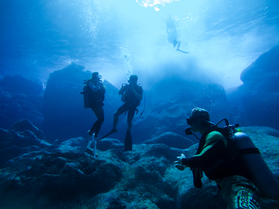 남태평양에 있는 미국령 섬 사이판은 괌과 함께 한국인 여행자에게 인기다. 리조트에서 느긋하게 쉬는 사람도 많지만 요즘은 스쿠버다이빙 자격증을 취득해 사이판의 맑은 바닷속 세계를 즐기는 이들이 많다.