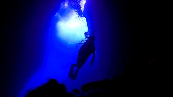 그로토에서는 물고기나 산호보다는 웅장한 바닷속 지형을 감상하는 재미가 남다르다.