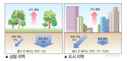 도시가 많아지면서 홍수의 발생률 또한 높아지고 있다. [비상학습백과]