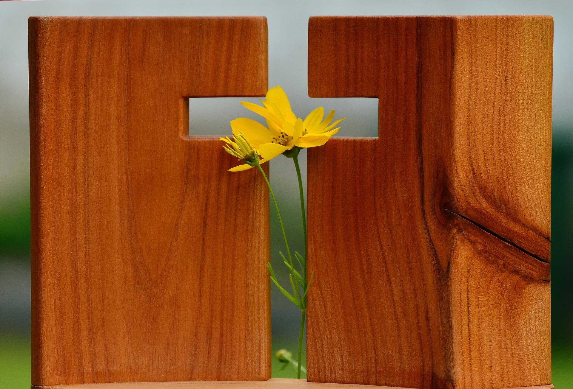 '내 안의 담벼락'을 부수는 일을 그리스도교에서는'자기 십자가를 짊어진다'고 표현한다.