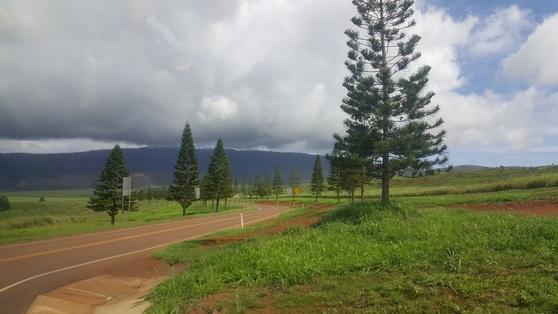 라나이는 하와이에서 6번째로 큰 섬이지만 포장도로가 48km밖에 없다. 신호등은 아예 없다. 안혜리 기자