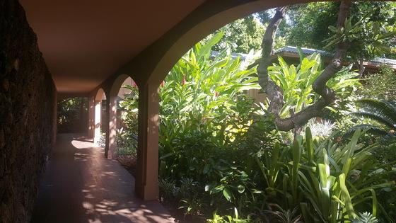 포시즌스 리조트 라나이는 분명 해변 옆 호텔인데 호텔 안에 들어서면 마치 식물원 속에 있는 것 같다. 안혜리 기자