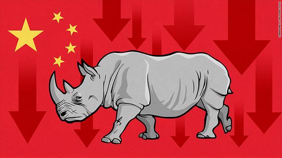회색 코뿔소는 지속적인 경고로 인해 사회가 인지하고 충분히 예상할 수 있지만 쉽게 간과하는 위험 요인을 뜻하는 말이다. 중국 경제 관료가 회색 코뿔소의 재앙으로 공개적으로 언급하면서 더 주목을 받는 말이다. [사진: CNN MONEY]