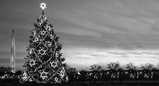 미국 백악관의 1983년 성탄 트리. [중앙포토]