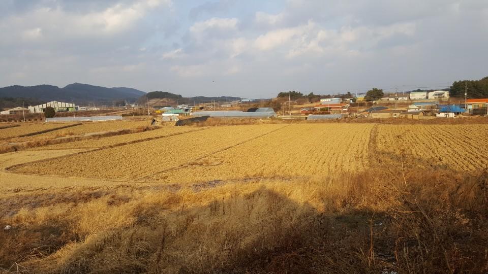 장점마을의 전경 [사진 환경안전건강연구소]