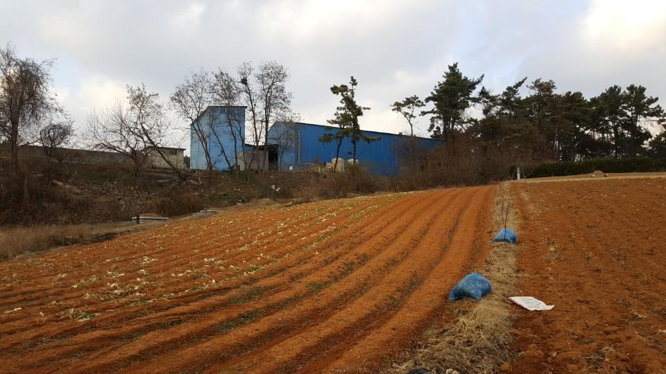 장점마을에 위치한 유기질 비료 제조 공장. [사진 환경안전건강연구소]