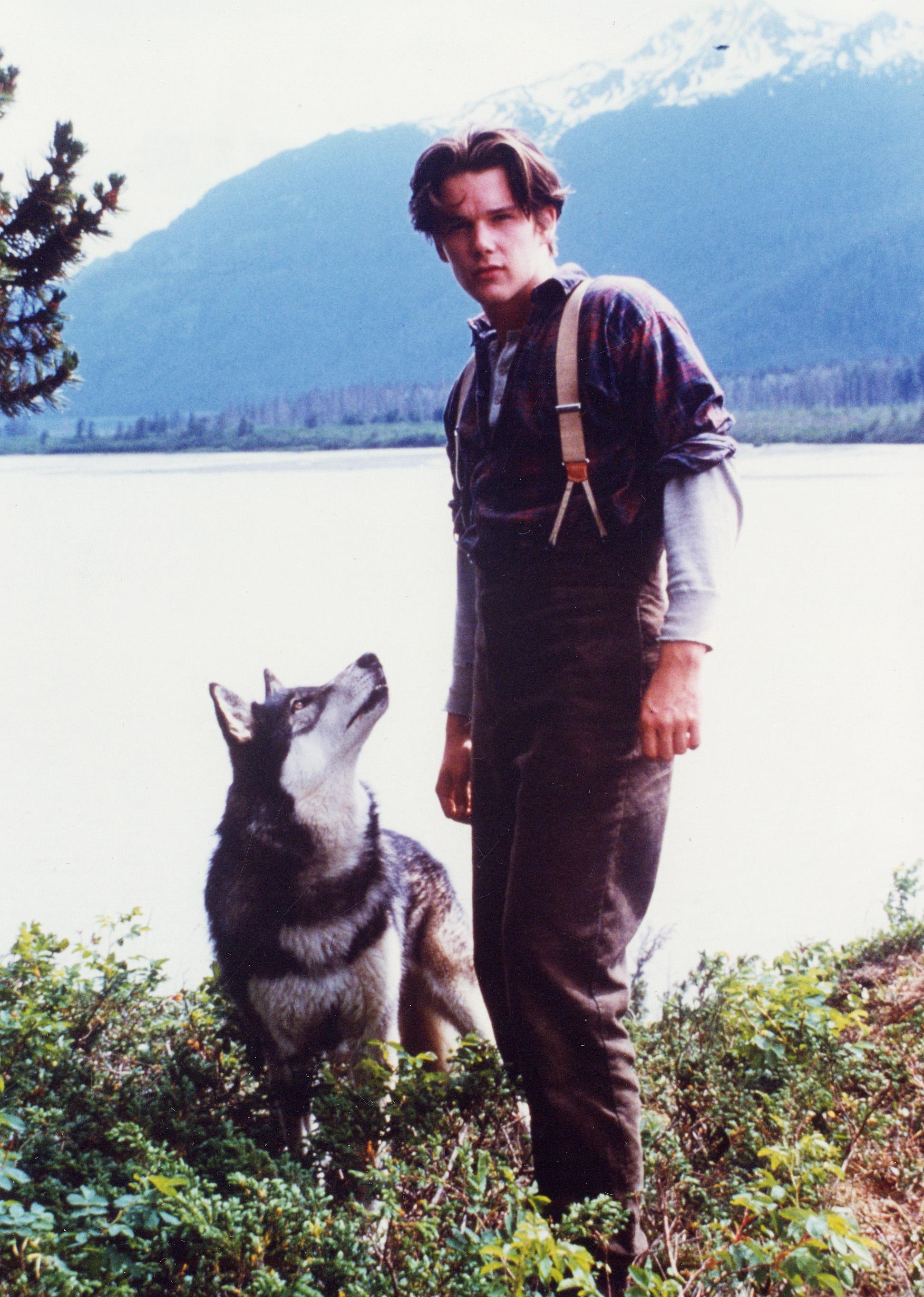 영화 '늑대개' 의 한 장면 [중앙포토]