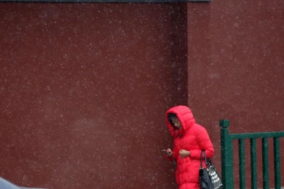 베이징의 추위. 한 여인이 자금성 담장 곁을 지나고 있다.