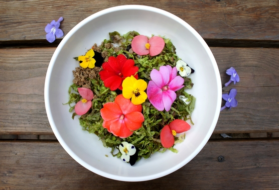 삼색제비꽃, 베고니아 등 식용 꽃을 버무린 꽃비빔밥. 2018년에는 꽃을 활용한 음료와 음식이 더 다양해질 전망이다. [중앙포토]
