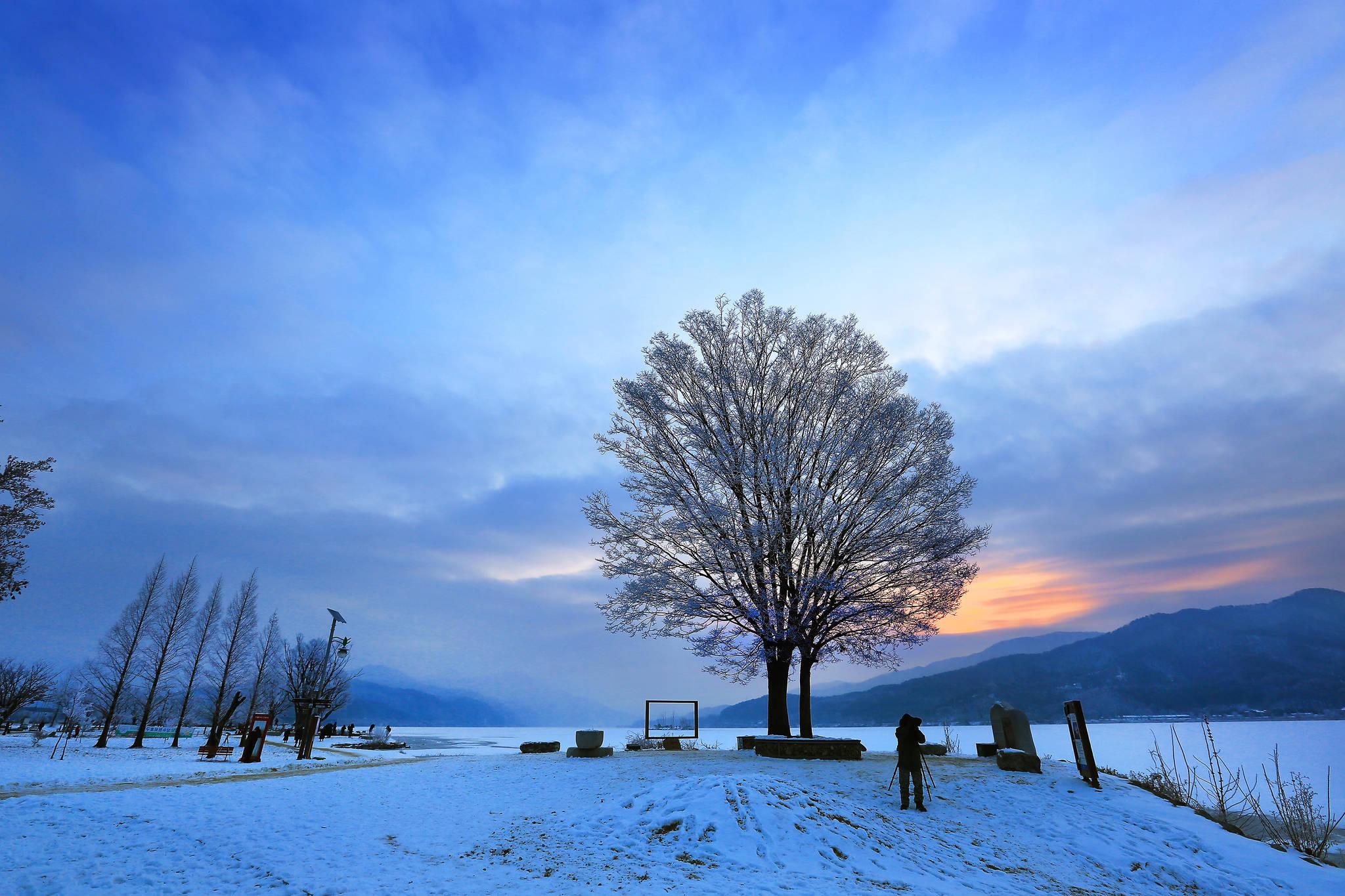 양평 두물머리 겨울 풍경. [사진 문화체육관광부]