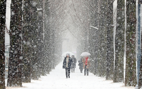 지난 9일 오전 광주 북구 전남대학교 교정에 함박눈이 내리고 있다. 충남 서해안과 호남 서해안, 제주에는 12일까지 많은 눈이 더 내릴 것으로 예보됐다. [광주=연합뉴스]