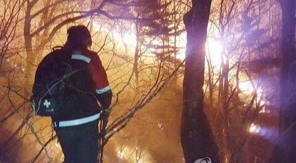 14일 오후 7시 53분께 강원 양양군 양양읍 화일리에서 발생한 산불을 진화하기 위해 진화대원이 불을 끄고 있다. [연합뉴스]