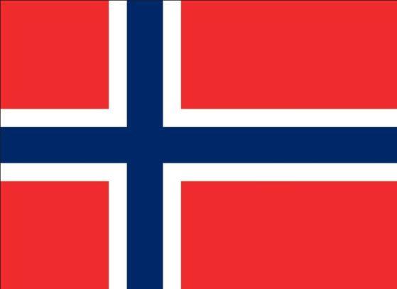 노르웨이 국기.