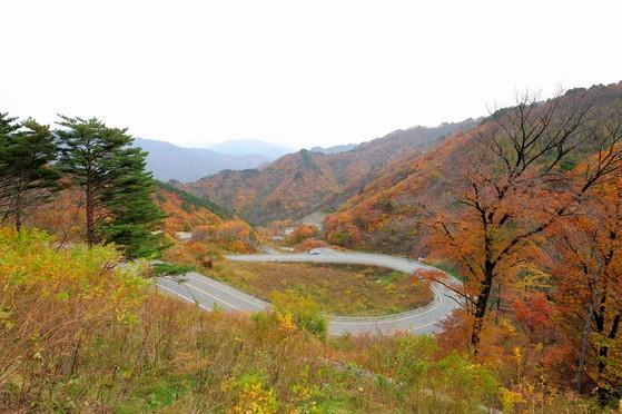 강원도 인제군 조침령에서 바라본 가을풍경 [사진 한국산림생태연구소 조현제 소장]