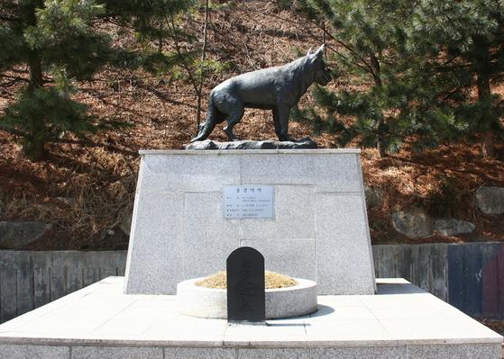 1990년 북한의 제4땅굴 수색작전 도중 폭사한 군견 헌트. 헌트에겐 인헌무공훈장과 함께 소위 계급이 주어졌다. 육군은 헌트 소위 동상도 세웠다. [사진 육군]