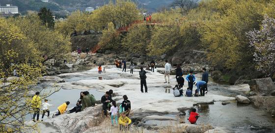 산수유 꽃이 만개한 전남 구례군 산동면 일대의 전경. [사진 구례군]