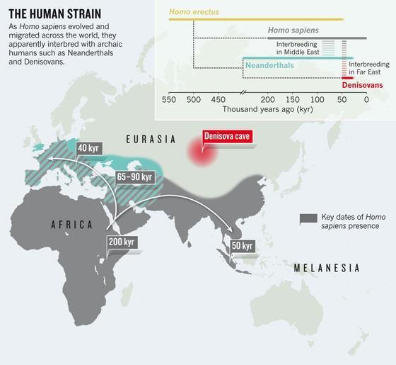 호모 사피엔스의 대이동. 아프리카에서 태어나 유럽, 아시아 등으로 이주했다. [중앙포토]