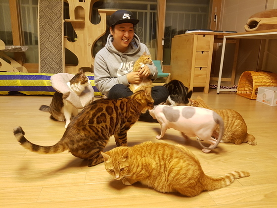 이시야마씨는 몸이 아파 평생 돌봐야 하는 길고양이와 외국에서 입양한 고양이 총 12마리를 키우고 있다. 박진호 기자