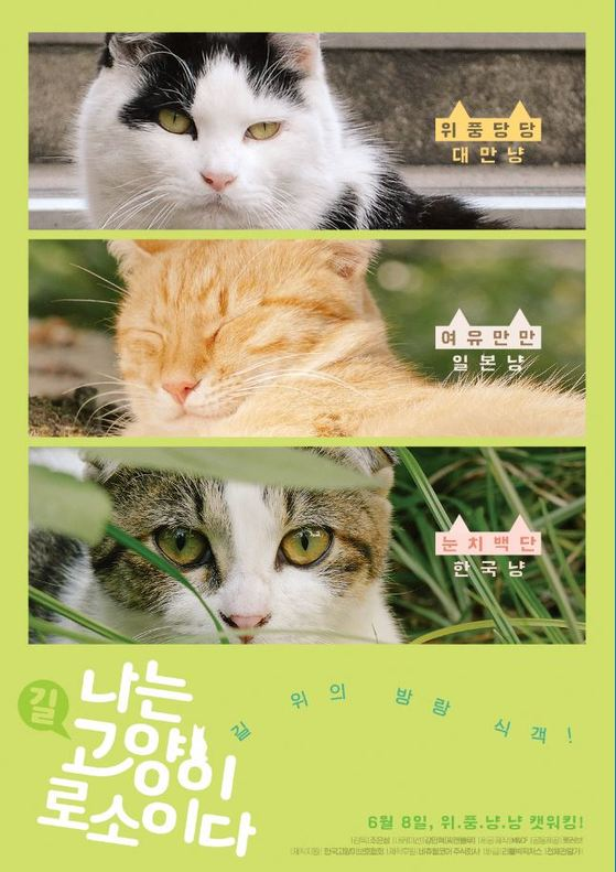 조은성 감독의 다큐멘터리 영화 '나는 고양이로소이다' 포스터.