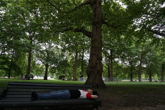 런던 그린파크 의자에 누워 망중한을 즐기는 남편 제삼열씨. [사진 윤현희]