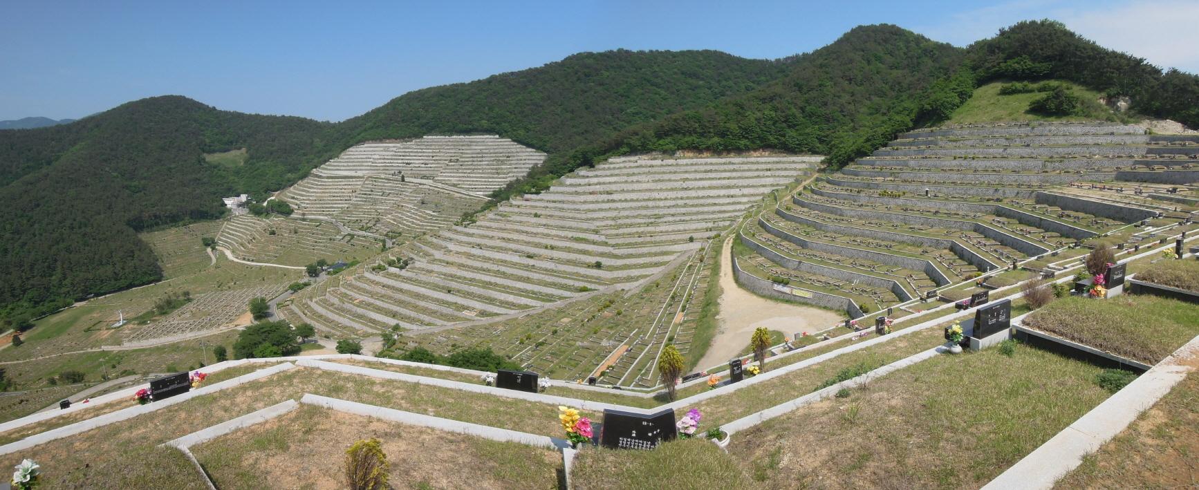 낙남정맥이 지나는 경남 고성군 이화공원묘원[사진 최윤호 백두대간숲연구소 연구실장]