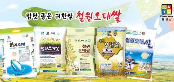 철원오대쌀 브랜드는 2016년 지리적 단체표장 상표로 등록됐다. [사진 철원군]
