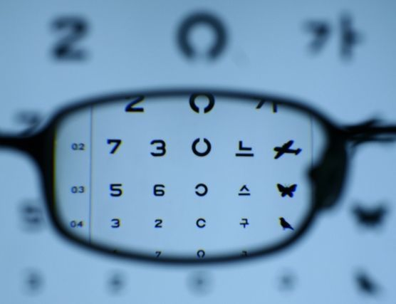 당신의 눈 '사이즈'는 얼마입니까