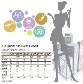 [통계로 본 강남] 강남 성형외과 5년 새 120개 늘어 355개