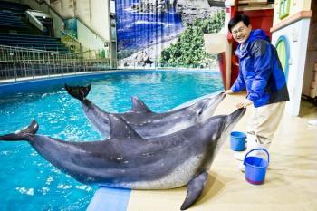 [당신의 역사] 국내 첫 돌고래 쇼, 동물원엔 75만 명이 몰렸다