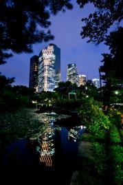 [김경록 기자의 작은 사진전] 연못이 그린 그림을 본 적 있나요