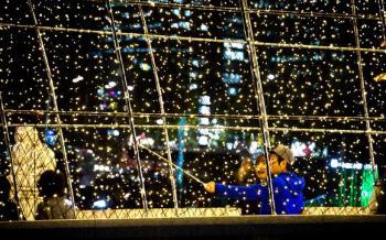 [김경록 기자의 '작은 사진전'] 반짝이는 가을밤