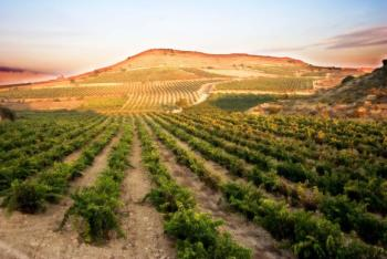 &#91;서한정이 추천하는 이주의 와인&#93; <34> 오래 숙성해 향이 깊은 라몬 빌바오