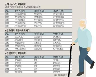 65세 이상 교통사고 4년 새 12%→16%